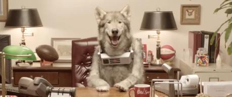 MrWolfdogHeader